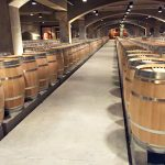 カリフォルニアワイン 収穫年毎の特徴は?(2011年〜2015年)