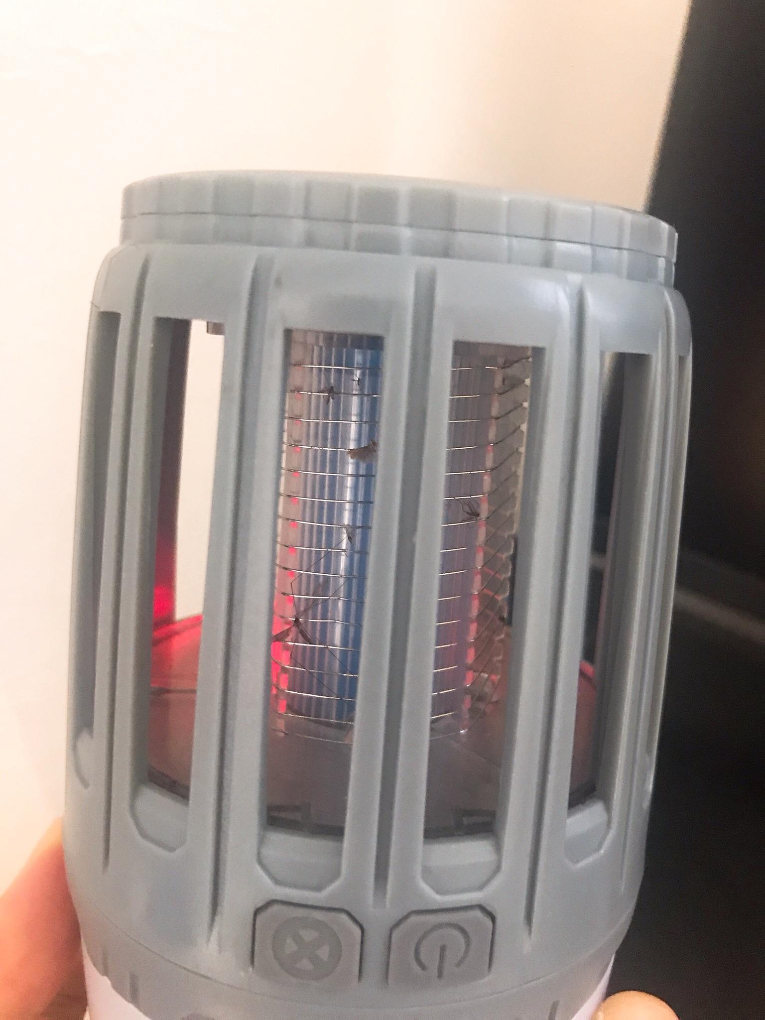 UVライトで集客する蚊殺機